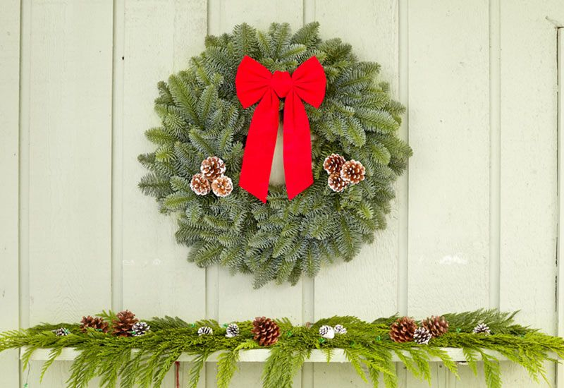 22 Inch Noble Fir Wreath
